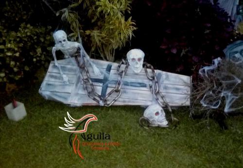 24 2Aguila_decoracoes_