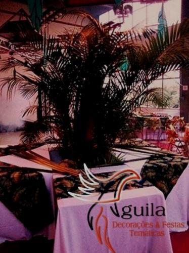 25Aguila_decoracoes_
